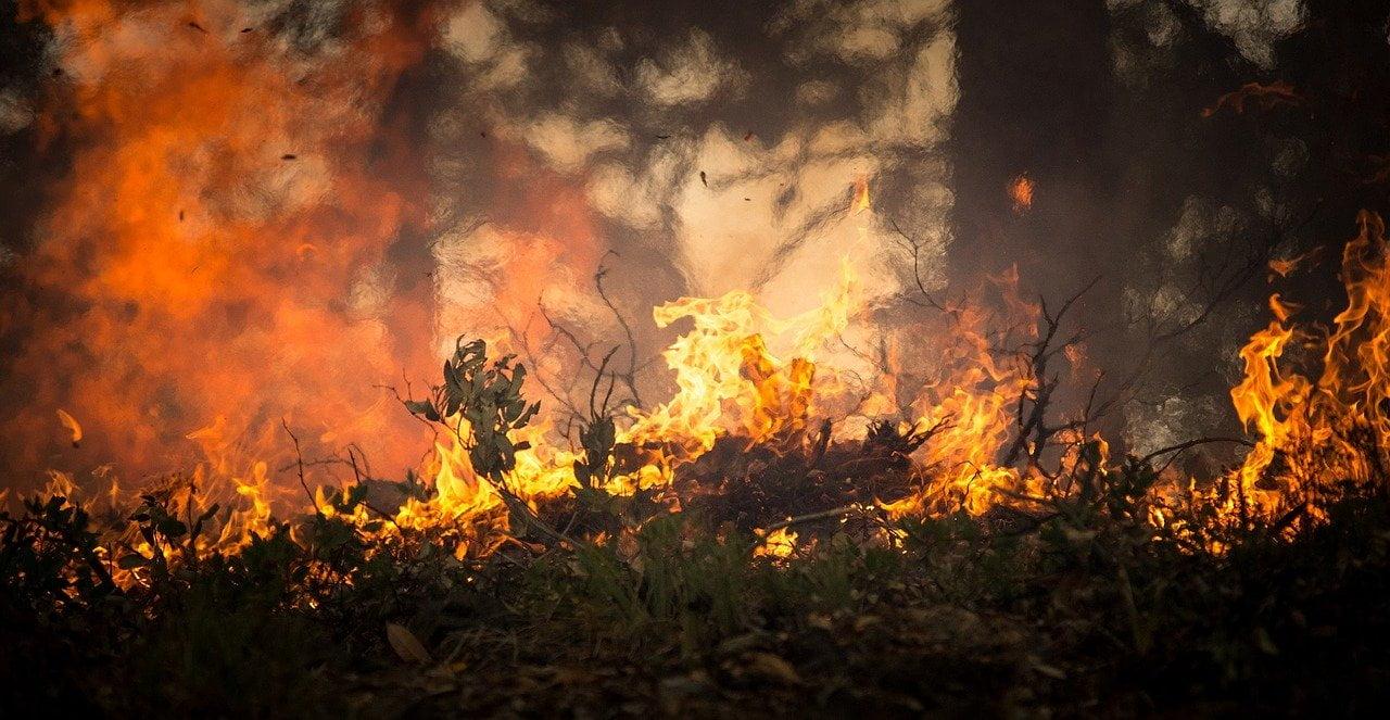 Incendiile din Peloponez, printre cele mai grave din ultimul secol si jumatate